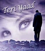 Teri Yaad songs mp3