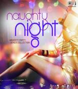 Naughty Night - Naughty Party Songs Collection songs mp3