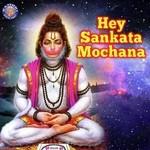 download Aarti Ki Je Hanuman Lala Ki Ketan Patwardhan mp3 song
