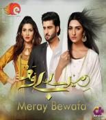 Meray Bewafa songs mp3