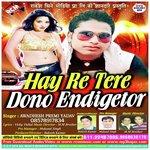 download Hay Re Tere Dono Endicator Awdesh Premi Yadav mp3 song