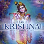 "download Aarti Kunj Bihari Ki (From ""Aartiyan Vol.1"") S. P. Balasubrahmanyam mp3 song"