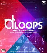 D Loops songs mp3