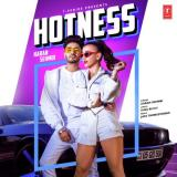 download Hotness Karan Sehmbi mp3 song