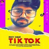 download Tik Tok Ricky Zabar mp3 song