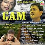 download Ishq Me Hum Tumhe Kya Bataye Farida Meer mp3 song