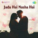 Jadu Hai Nasha Hai songs mp3