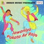 Jawaniya Pakata Ae Raja songs mp3