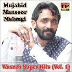 download Jerhy Rang Di Main Han Mujahid Mansoor Malangi mp3 song