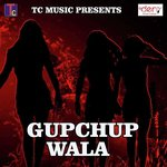 download Gupchup Wala Nanu Razak mp3 song