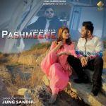 download Pashmeene Jung Sandhu mp3 song