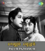 Ponaal Pogattum T M Soundararajan Mp3 Song Download Pendujatt