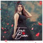 download Tere Bina Mannat Noor mp3 song
