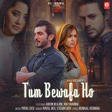 download Tum Bewafa Ho Payal Dev,Stebin Ben mp3 song