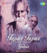 Tapur Tupur - Tagore Poems For Children By Gulzar songs mp3